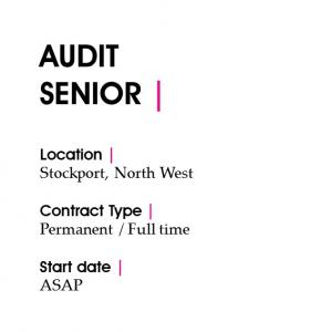 audit-senior